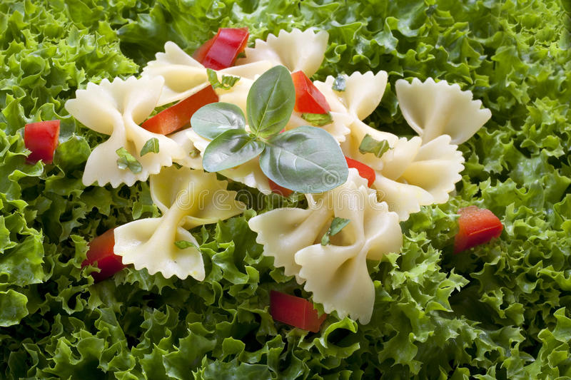 Salad and pasta stock photos