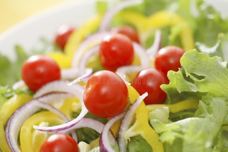 Download Salad stock image. Image of lettuce, vegetables, plate - 39040389