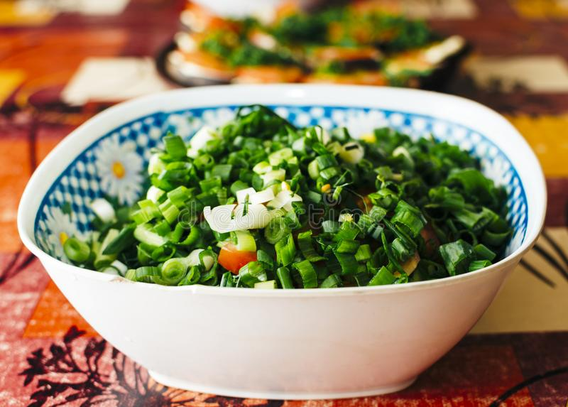 Salad In Plate. Green salad with onion, garlic and other vegetables in the plate on the home table stock image