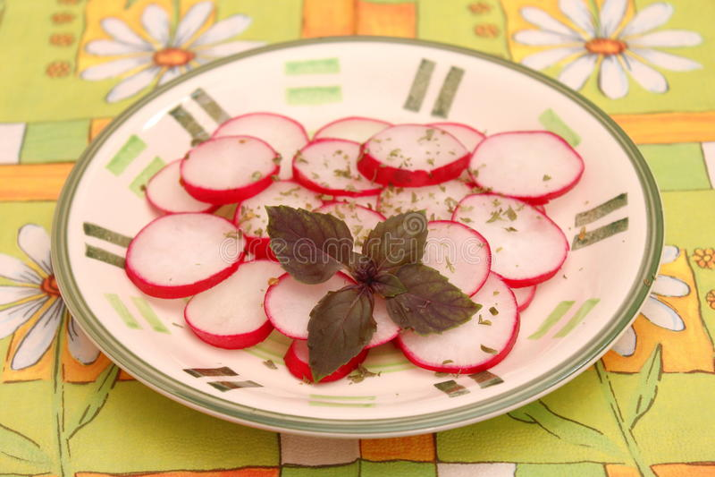 Salad of radish royalty free stock image
