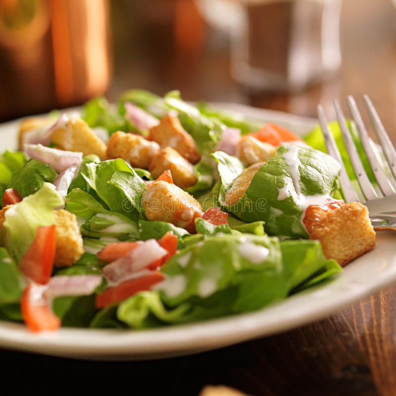 Salad with ranch dressing, tomatoes, onions, and croutons. Shot close up with selective focus stock images