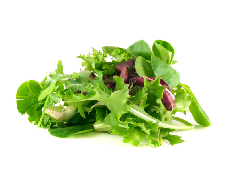 Salad rucola, frisee, radicchio, lamb's lettuce. Salad mix with rucola, frisee, radicchio and lamb's lettuce. on white background stock image