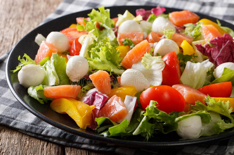 Salad with salmon fish, mozzarella cheese and fresh vegetables c royalty free stock image