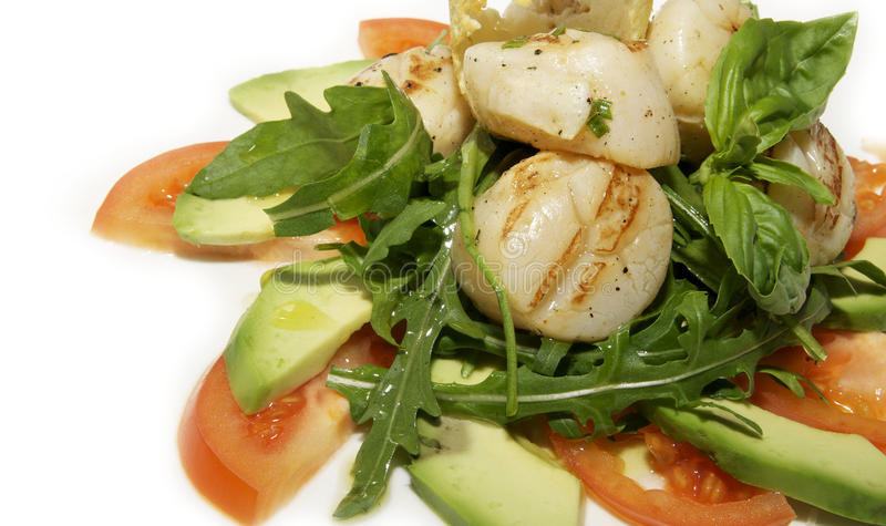 Download Salad of scallops stock image. Image of inside, plate - 23931483