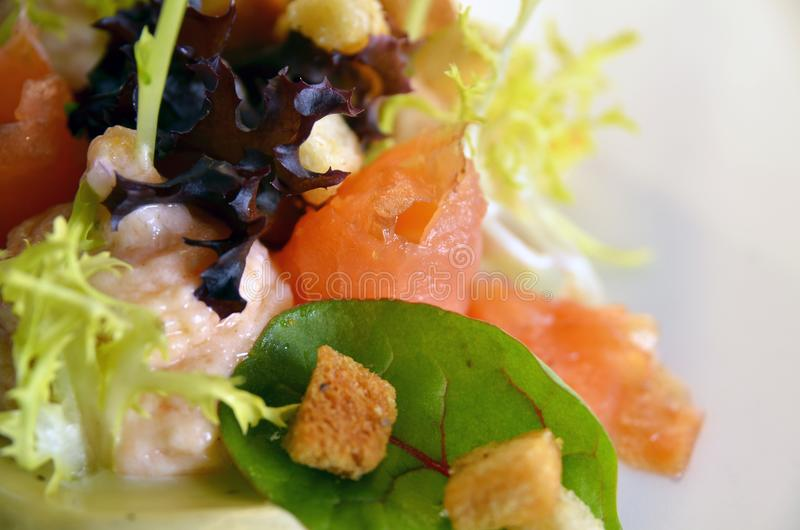 Salad with smoked salon and salmonmouse royalty free stock images