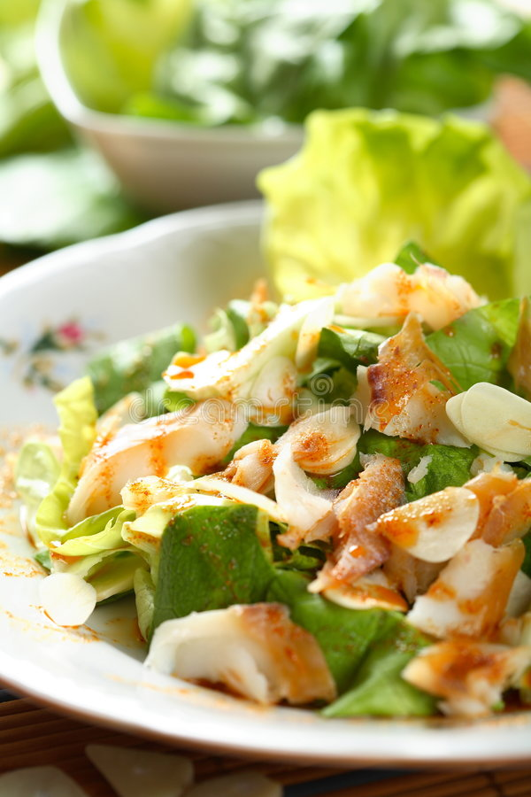 Salad with sole stock image