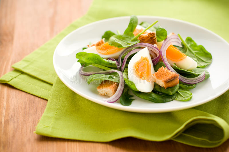 Salad with spinach and egg stock image