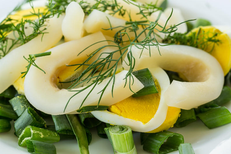 Salad with squid and eggs stock images
