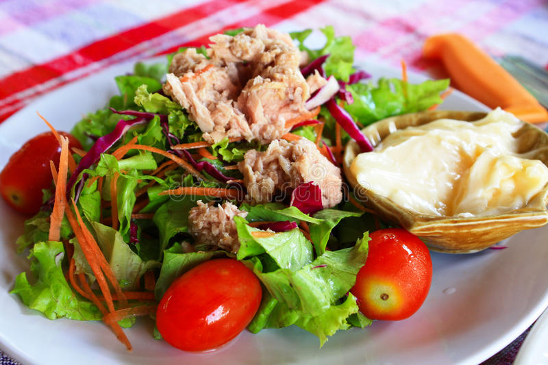 Download Salad With Tuna. stock image. Image of appetizer, vitamin - 33340221
