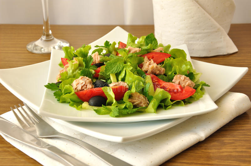 Salad with tuna, vegetables and mint stock photo