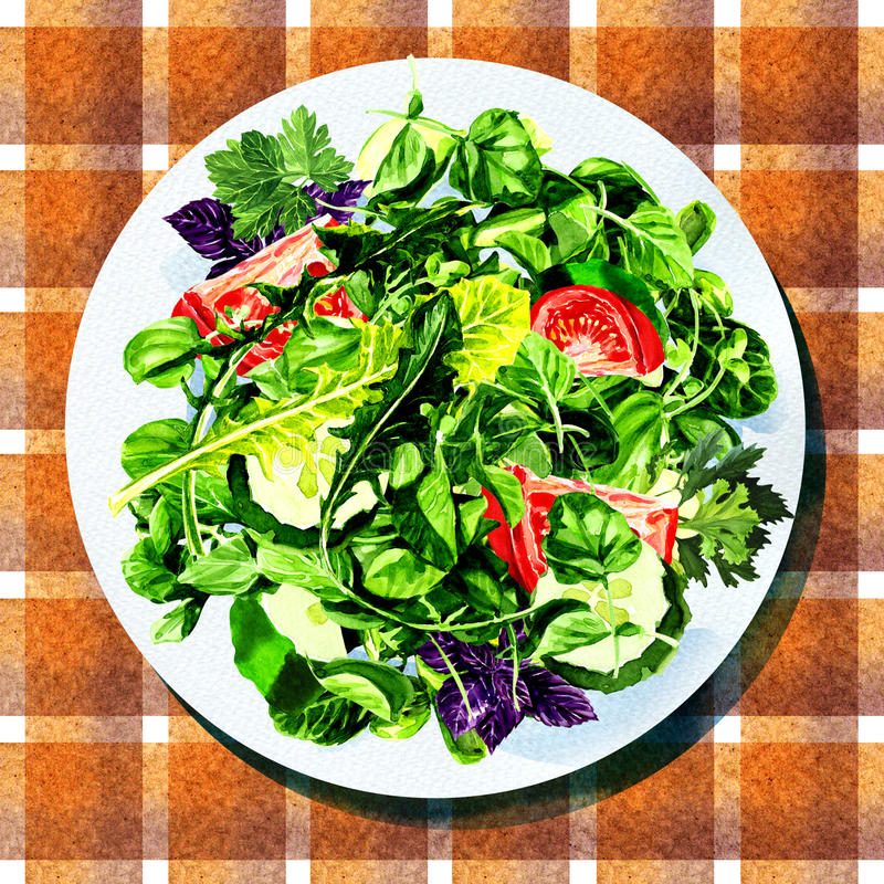 Salad with vegetables and greens on white plate royalty free illustration