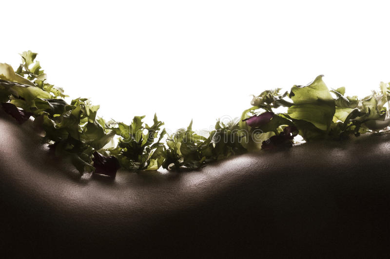 Salad on woman skin royalty free stock images