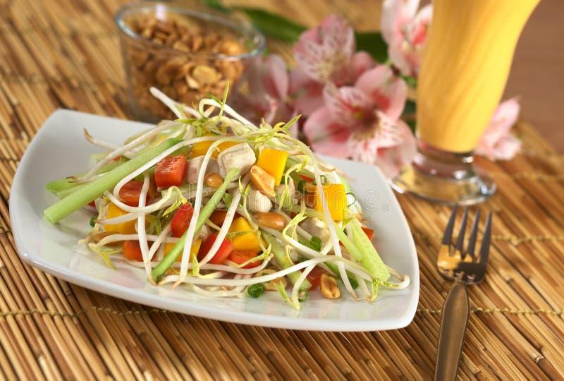 Salada asiática fresca com galinha imagem de stock royalty free