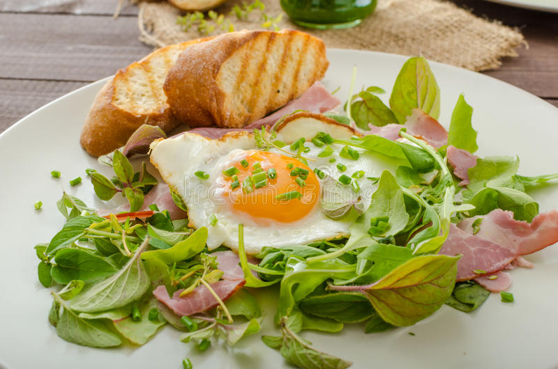 Salada clara do verão, batido herby imagem de stock royalty free