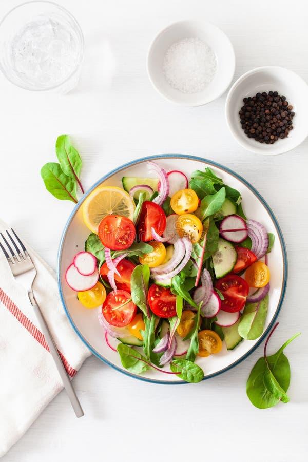 Salada colorida saudável do tomate do vegetariano com pepino, rabanete, cebola foto de stock royalty free