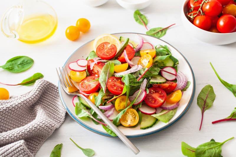 Salada colorida saud?vel do tomate do vegetariano com pepino, rabanete, cebola fotos de stock royalty free