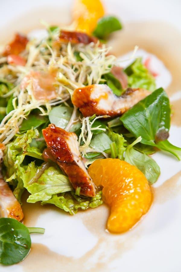 A salada com chiken e laranja foto de stock royalty free