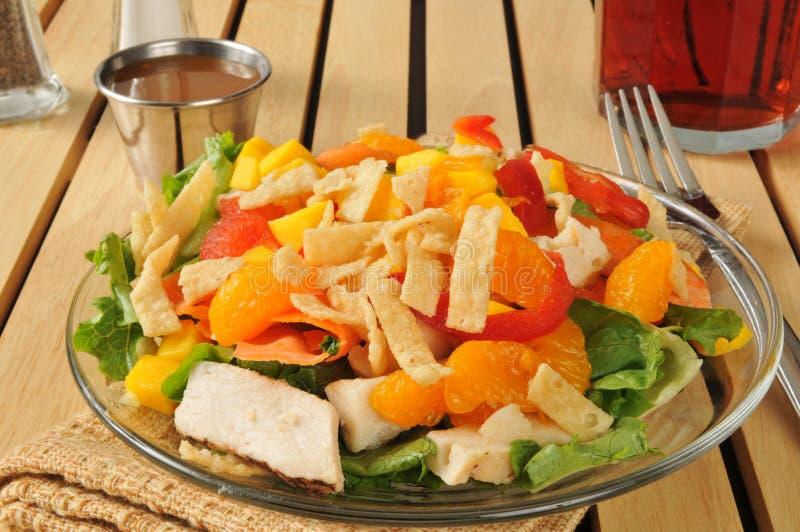 Salada com fruto tropical e galinha imagem de stock