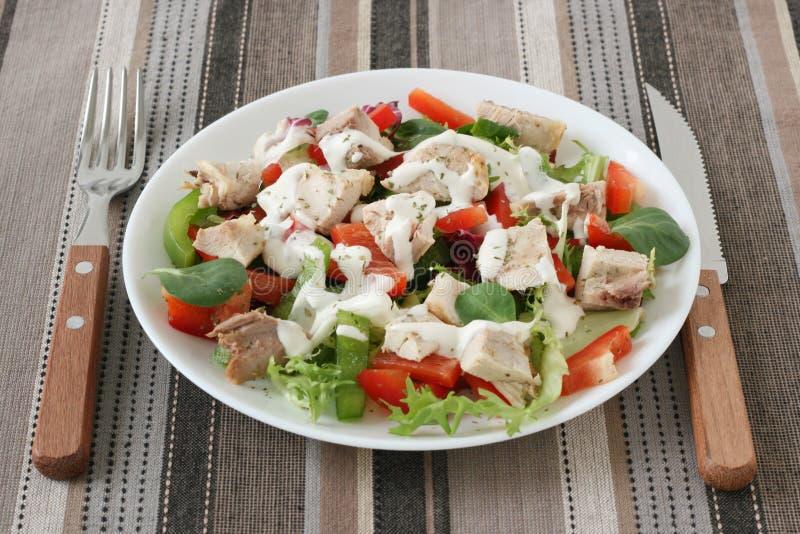Salada com galinha e molho imagens de stock royalty free