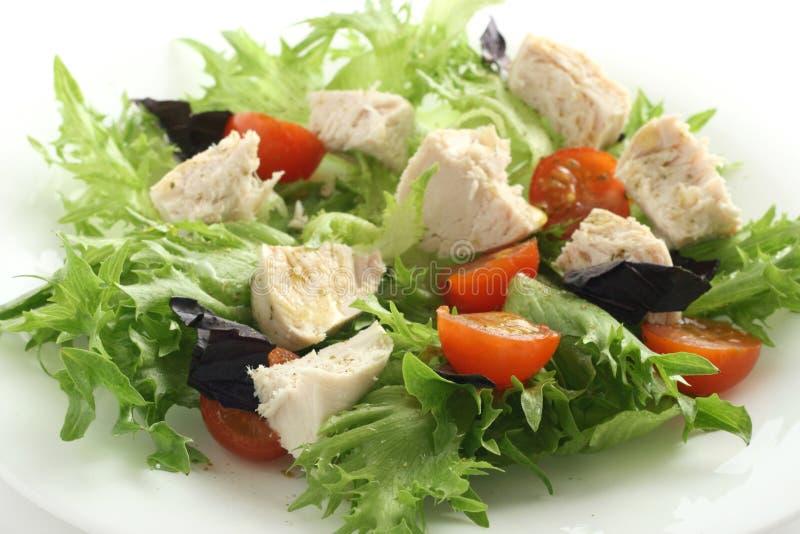 Salada com galinha fervida foto de stock royalty free