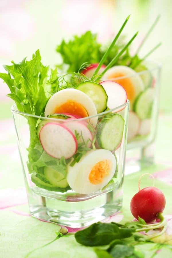 Salada com pepino, radish e ovo imagens de stock royalty free