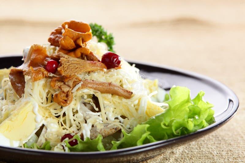 Salada com queijo no prato imagem de stock