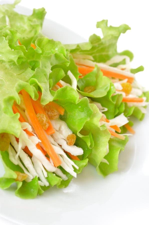 Salada com repolho, cenouras e raisins fotos de stock royalty free