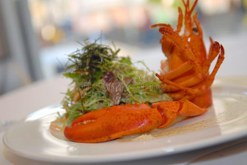 Salada com uma lagosta fotografia de stock