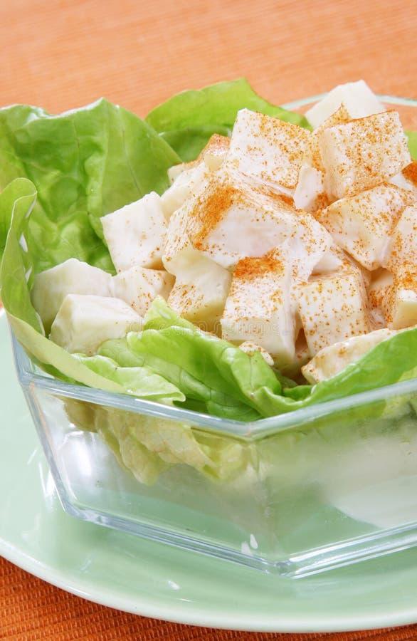 Salada da alface imagem de stock royalty free