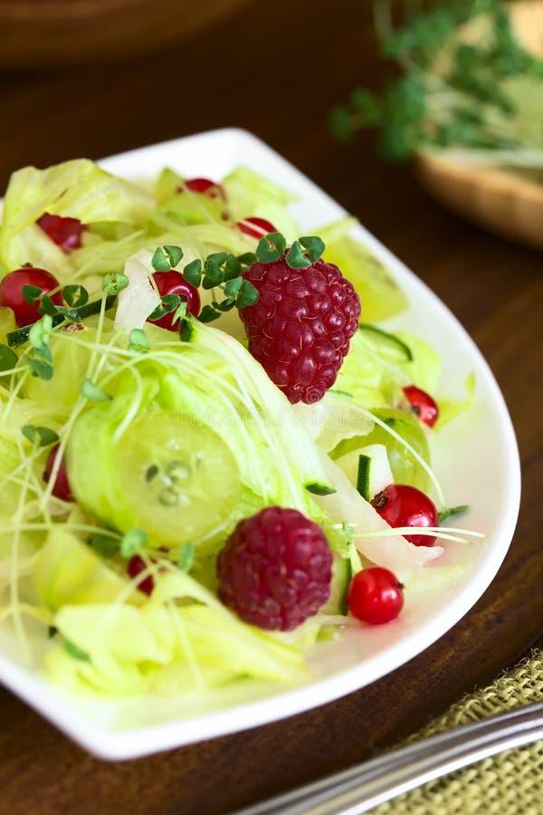 Salada da alface, da groselha, da framboesa e do corinto vermelho com Chia Sprouts fotos de stock