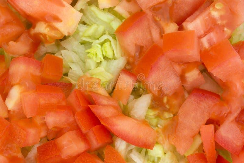 Salada da alface e do tomate fotografia de stock