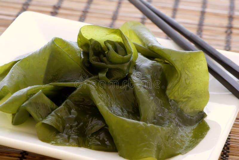 Salada da alga imagens de stock royalty free