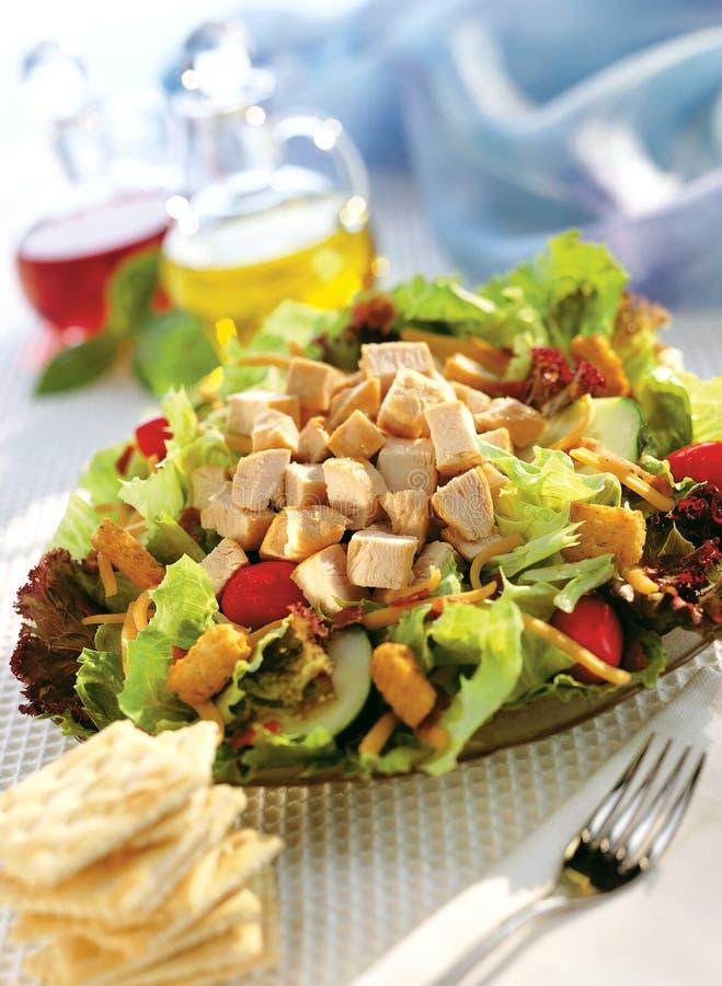 Salada da galinha imagens de stock