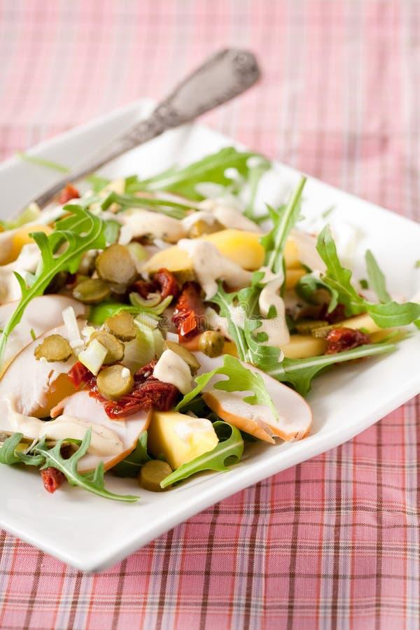 Salada da manga foto de stock