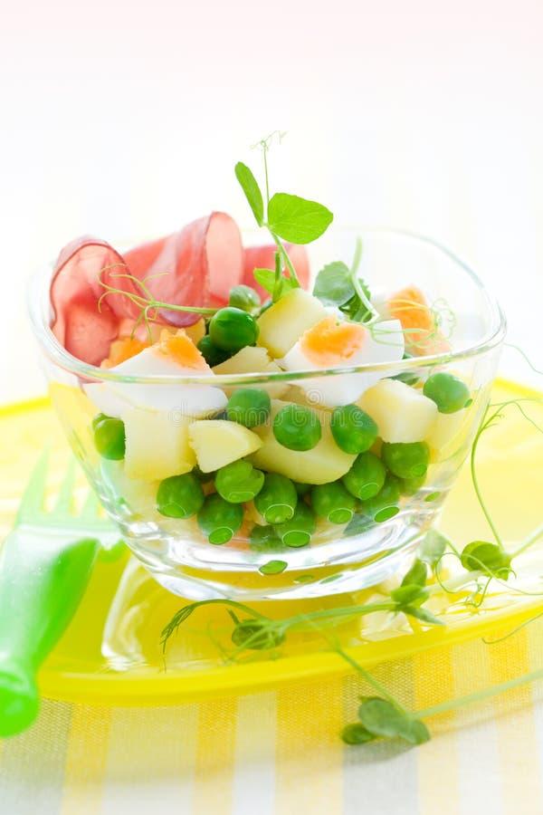 Salada da mola imagem de stock