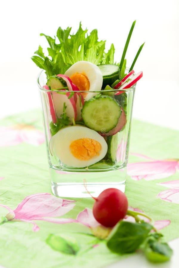 Salada da mola foto de stock