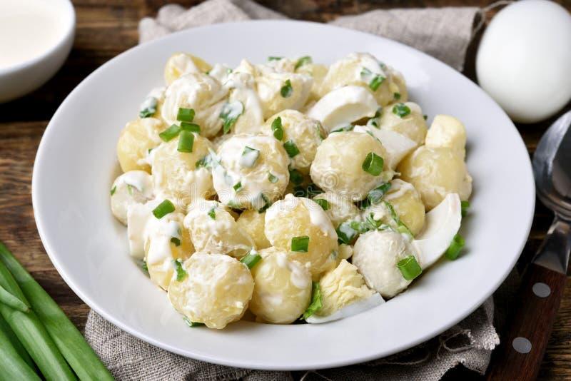 Salada de batata caseiro com ovos e a cebola verde imagem de stock