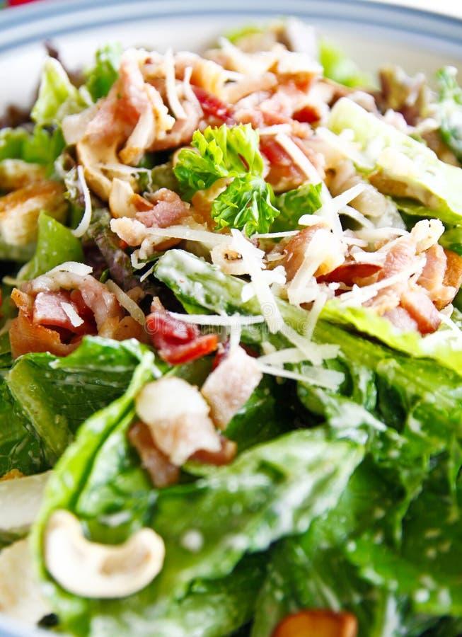 Salada de caesar imagem de stock royalty free