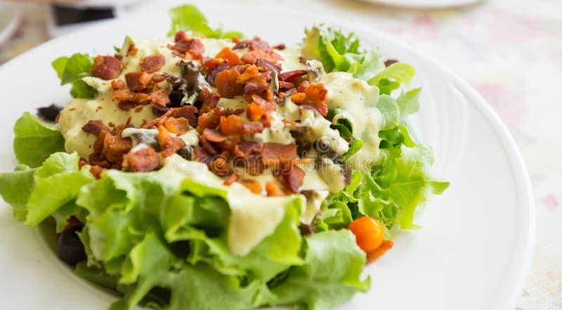 Salada de caesar imagem de stock