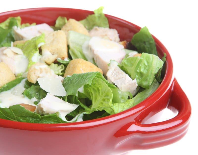 Salada de caesar da galinha fotos de stock royalty free