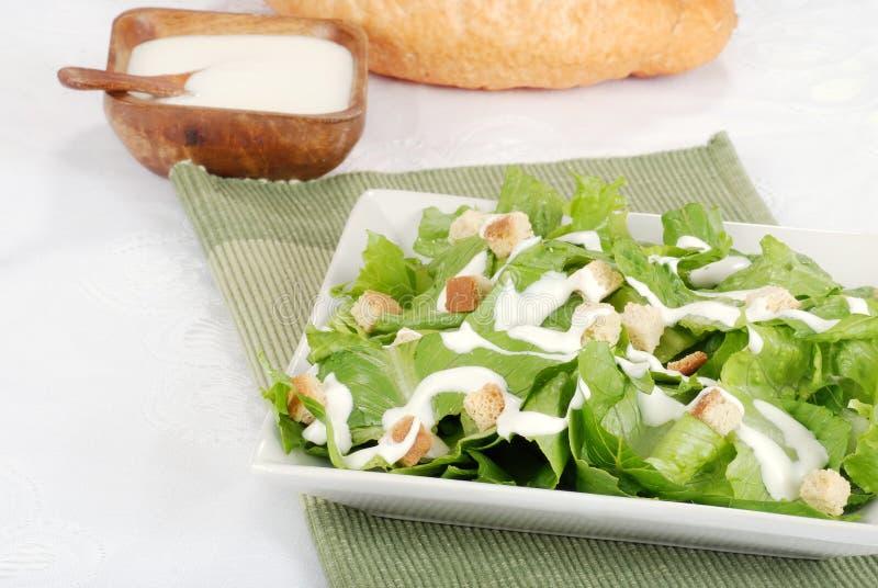 Salada de Cesar foto de stock royalty free