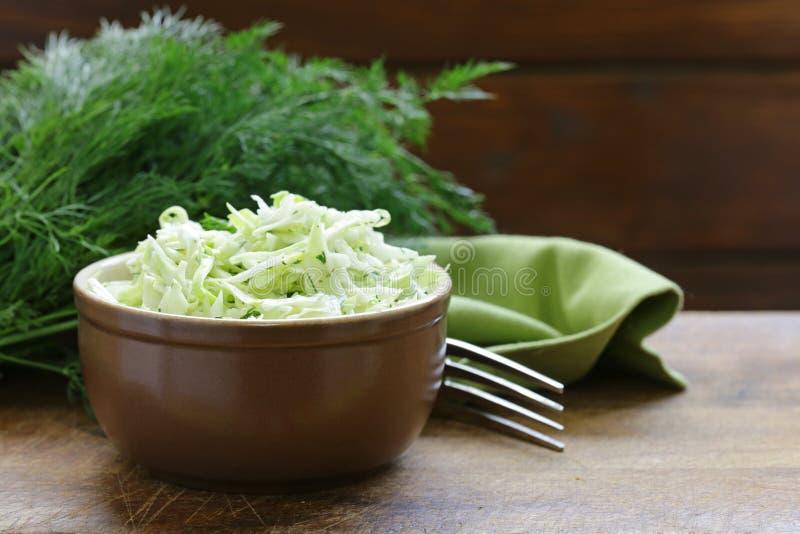 Salada de Cole Slaw da couve fotografia de stock