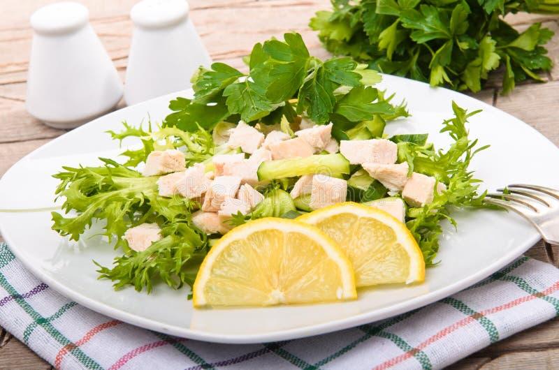 Salada de frango imagem de stock