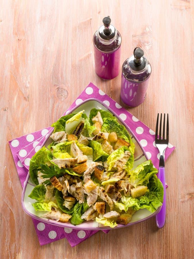 Download Salada De Frango Com Alface Imagem de Stock - Imagem de fresco, jantar: 29847599