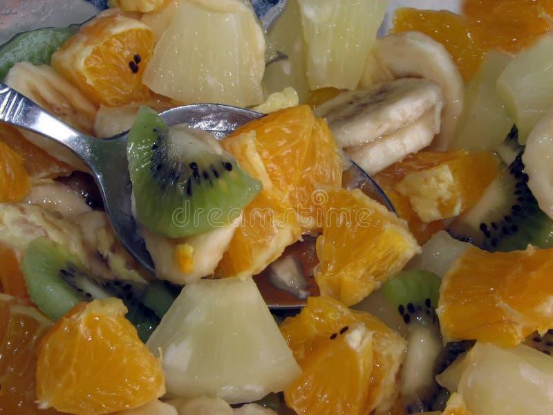A salada de fruto da vitamina está pronta foto de stock