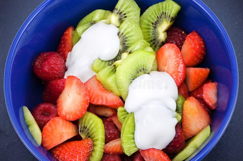 Salada de frutos imagem de stock