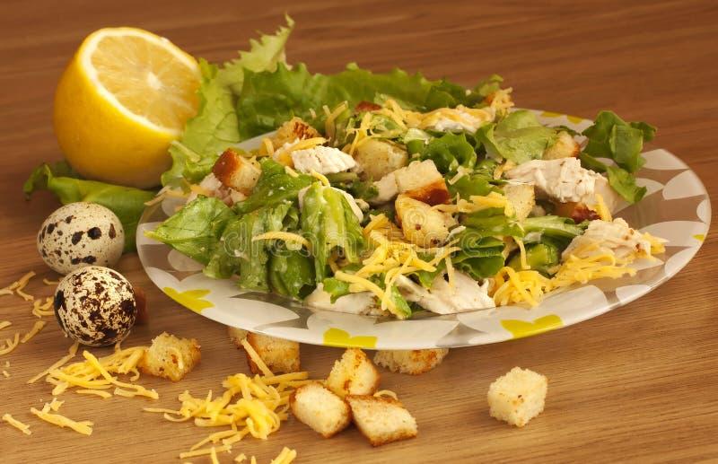 Salada de galinha fotos de stock