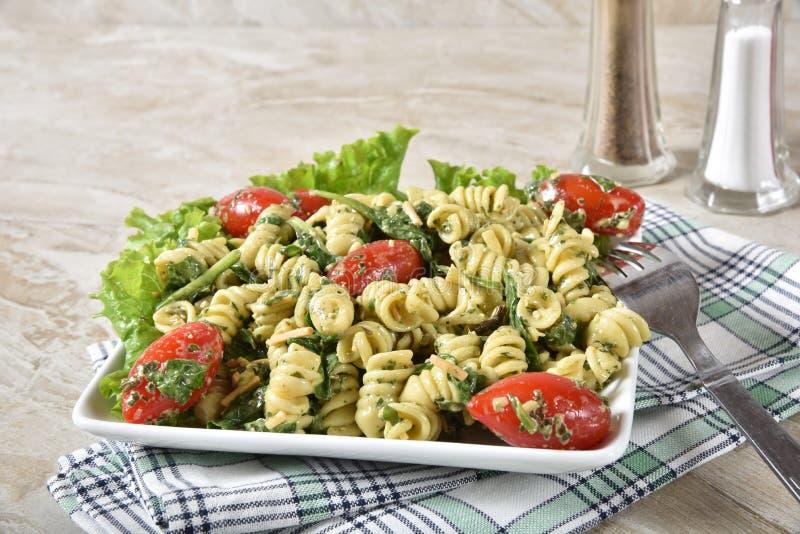 Salada de massa dos espinafres com espaço da cópia fotografia de stock royalty free