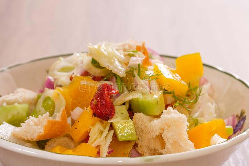Salada de Panzanella com pão, tomate, pimenta, pepino e erva-doce imagem de stock royalty free