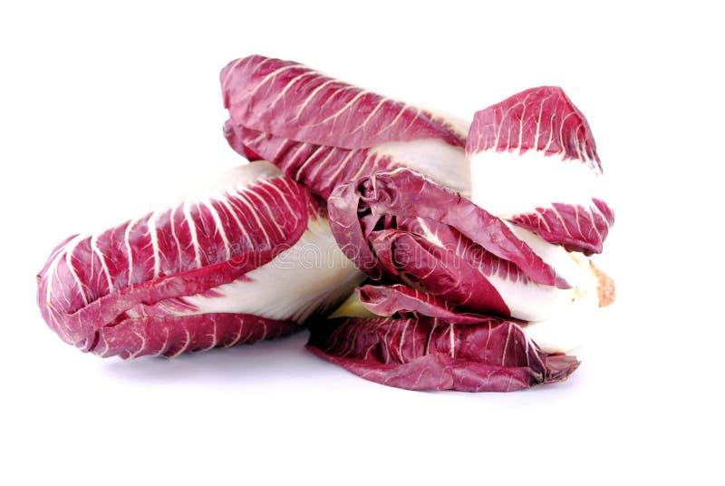 Salada de Radicchio imagens de stock